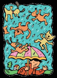 It was raining cats and dogs essay